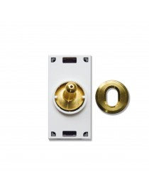 2CH BUS CONTROL - BRASS LEVER